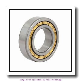 90 mm x 160 mm x 40 mm  NTN NJ2218 Single row cylindrical roller bearings