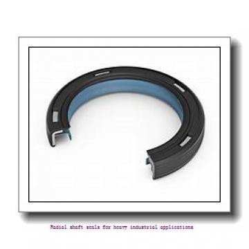 skf 2425560 Radial shaft seals for heavy industrial applications