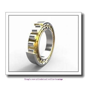 20 mm x 52 mm x 21 mm  NTN NJ2304EG1 Single row cylindrical roller bearings