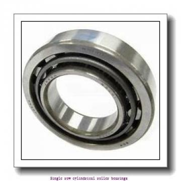 85 mm x 150 mm x 36 mm  NTN NJ2217 Single row cylindrical roller bearings