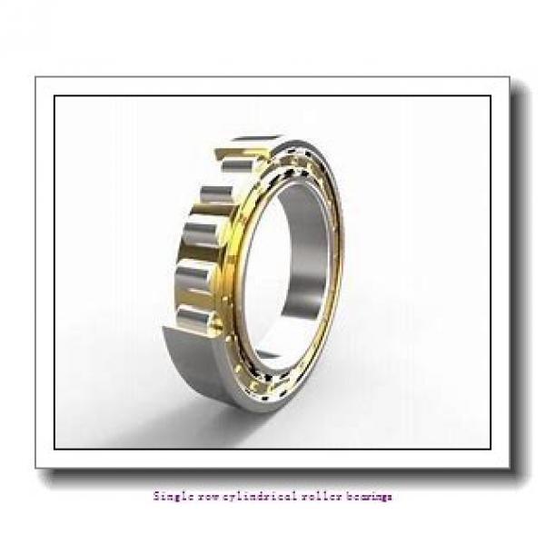 70 mm x 125 mm x 31 mm  NTN NJ2214EG1 Single row cylindrical roller bearings #1 image