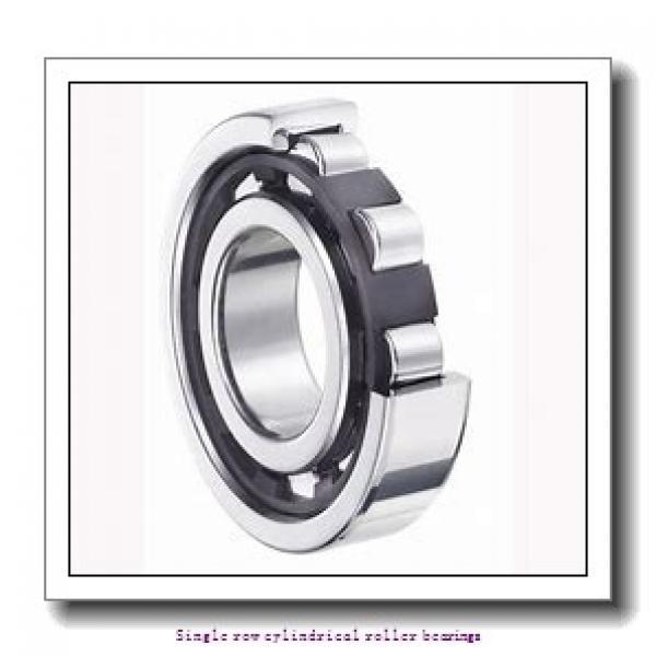95 mm x 170 mm x 32 mm  NTN NJ219C3 Single row cylindrical roller bearings #1 image